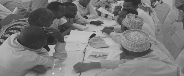 Selection of the Next Somalia Parliament: The Citizens' View