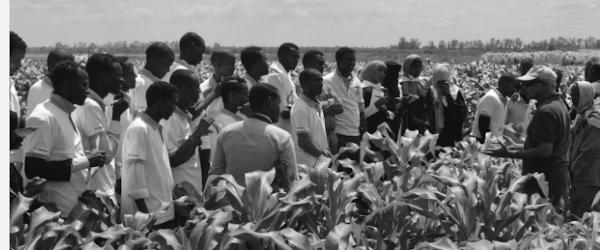 Somalia's Agriculture